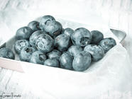 Blueberries Three Ways found on PunkDomestics.com